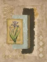Metallic Iris II Fine-Art Print