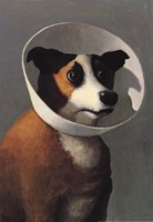 Filmhound Fine-Art Print