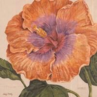 Island Hibiscus II Fine-Art Print