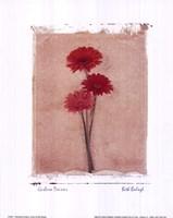 Gerbera Daisies Fine-Art Print