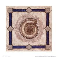 Solarium Shell Fine-Art Print