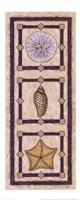 Sand Dollar & Shells Fine-Art Print