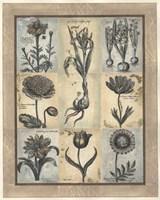 Eleanor's Treasure II Fine-Art Print