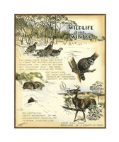Wildlife Fine-Art Print