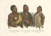 Chief Der Puncas Fine-Art Print