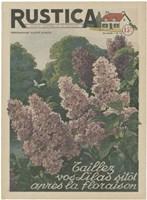 Plantez Des Lilacs Fine-Art Print