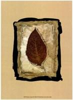Kyoto Leaves III Fine-Art Print