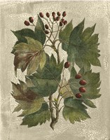 Printed Deshayes Trees I Fine-Art Print
