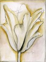 Fluid Beauty II Fine-Art Print