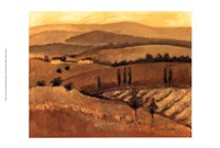 Golden Tuscany Afternoon II Fine-Art Print