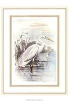 White Heron Fine-Art Print
