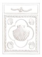 Shell Panel Fine-Art Print