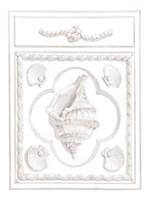 Conch Panel Fine-Art Print