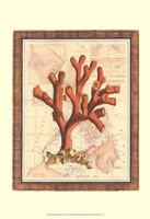 Exotic Map with Coral I (D) Fine-Art Print