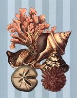 Shell and Coral on Aqua I Fine-Art Print