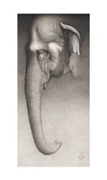 Toni, The Elephant Giclee