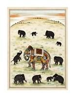 Indian Elephant Gathering Giclee