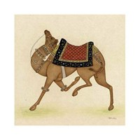 Camel from India I Giclee
