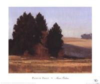 Palouse Frost Fine-Art Print