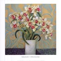 White December Fine-Art Print