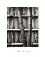 Bamboo and Wall Fine-Art Print