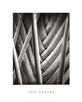 Palm Pattern Fine-Art Print