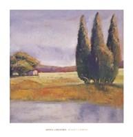 Sunset Cypress Fine-Art Print