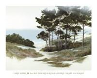 Sand Hill Fine-Art Print