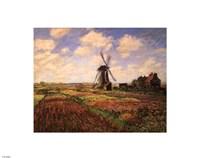 Tulip Fields with Windmill Fine-Art Print