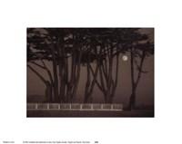 Twilight and Reverie Fine-Art Print