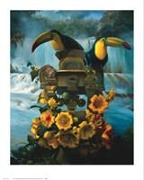 Cascadas de Aguazul Fine-Art Print