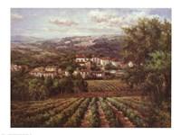 Vino Bianco Fine-Art Print