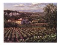 Vino Rosso Fine-Art Print