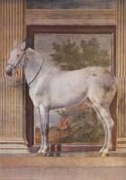 Mantua Fresco I Fine-Art Print