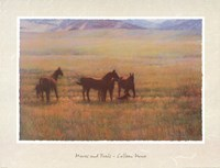 Mares and Foals Fine-Art Print