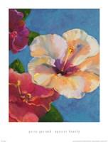 Apricot Brandy Fine-Art Print