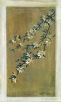 Plum Blossoms II Fine-Art Print