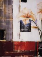 Lily Silueta Fine-Art Print