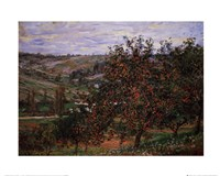 Apple Trees Fine-Art Print