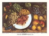 Fruits Autumn Varieties Fine-Art Print