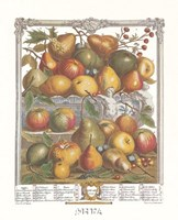 January/Twelve Months of Fruits, 1732 Fine-Art Print