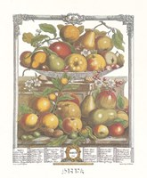 March/Twelve Months of Fruits, 1732 Fine-Art Print