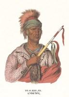 Ne-O-Mon-Ne, an Ioway Chief Fine-Art Print