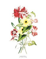 Flowers (Untitled) - Bouquet Fine-Art Print