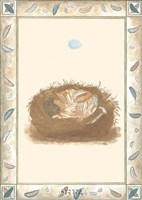 Woodland Nest I Fine-Art Print
