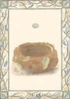 Woodland Nest III Fine-Art Print