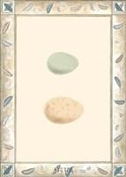 Antique Eggs II Fine-Art Print