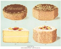 Decorated Gateaux-Chocolate Fine-Art Print