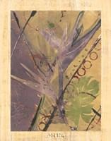 Rainforest Suite II Fine-Art Print