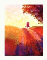 Amish Buggy Fine-Art Print
